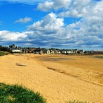 Elie Beach Summer Dog Walking