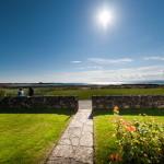 garden path on sunny day